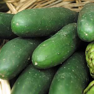Seed – Cucumber Marketmore Organic 35 Pk