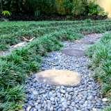 Dwarf Green Mondo Grass 16 - Garden Express Australia