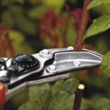 Felco 100 – Pruner Cut & Hold Rose