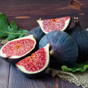 Genoa Black Fig