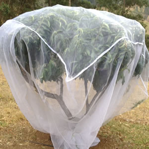 Fruit Saver Tree Net