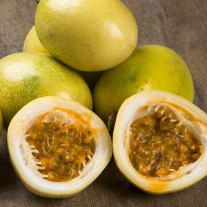 Passionfruit Panama Gold
