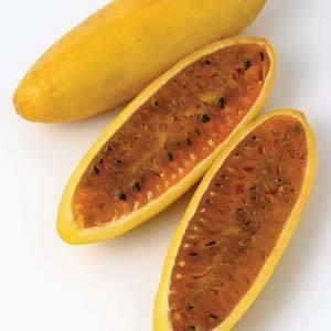 Passionfruit Banana Nk - Garden Express Australia