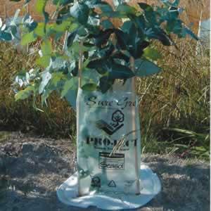 Tree Guard 05