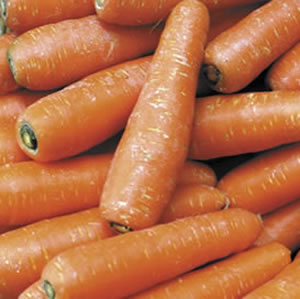 Seed – Carrot All Year Round 2000 Pk