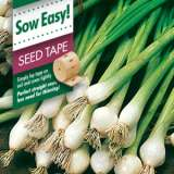 SEED TAPE – SPRING ONION