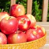 Apple-Red-Fuji-ST-163022852-15