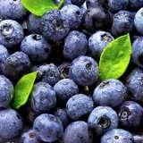 Blueberry_Sunshine_Blue_13