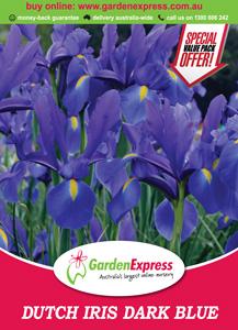Ge Value Pack Dutch Iris Dark Blue 300x214