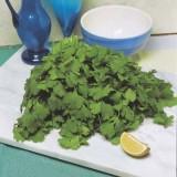 coriander-lemon 100 pk 16