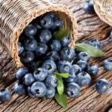 Blueberry Sunshine Blue
