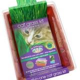 Catgrass Seed Raising Kit