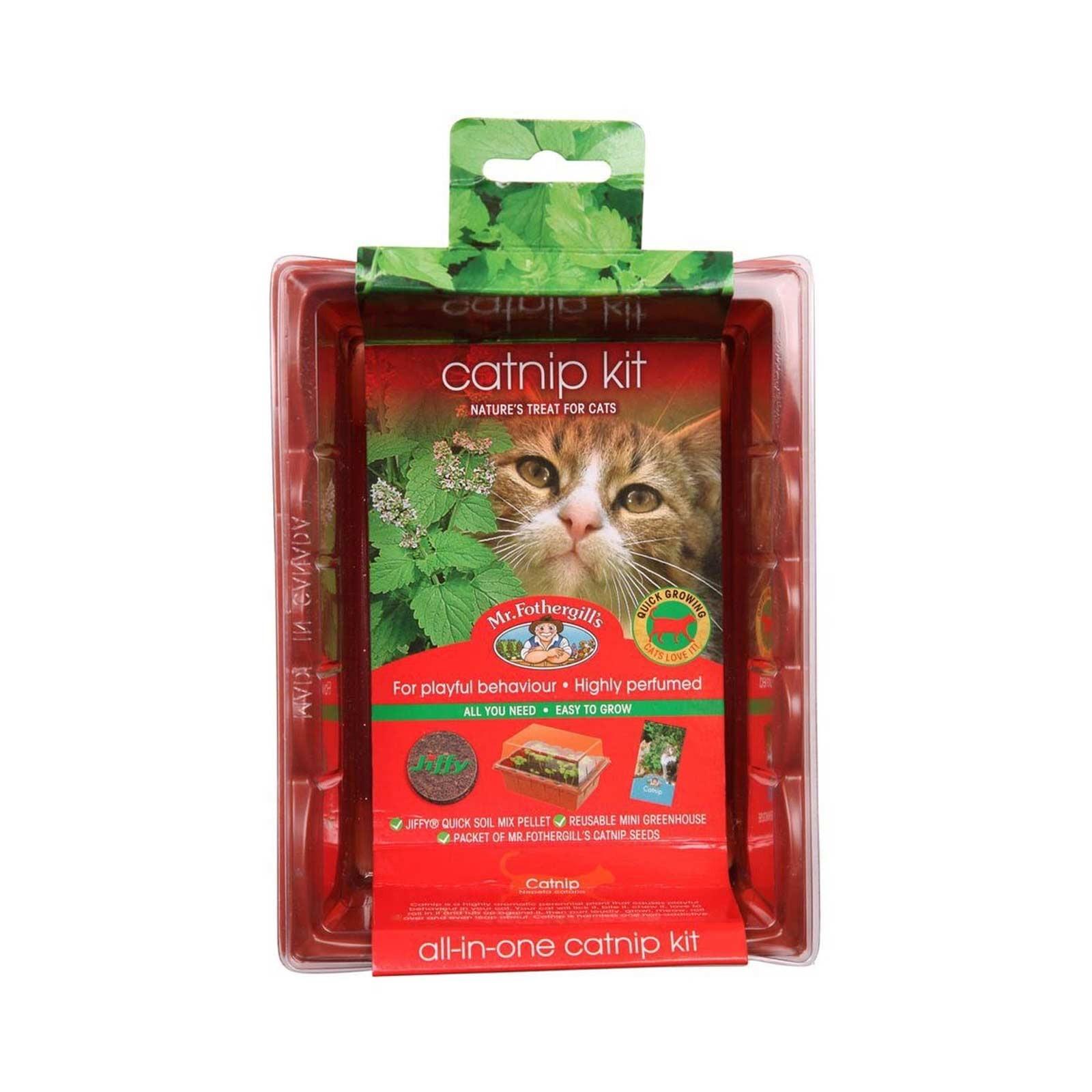 Catnip Seed Raising Kit