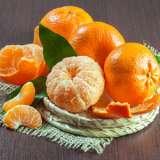 Dwarf Emperor Mandarin