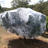large fruit tree net