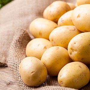 Certified Seed Potato Nadine