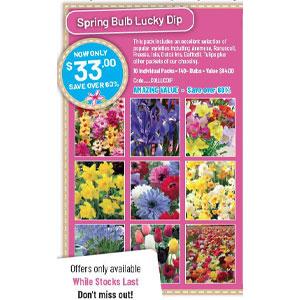Spring Bulb Lucky Dip Pack