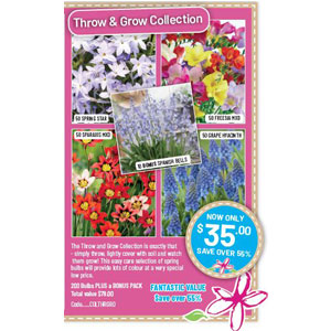Throw & Grow Collection