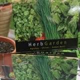 Buzzy-Herb-Garden