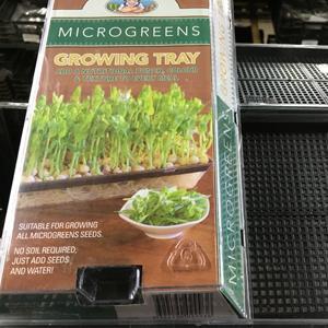 Microgreens Growing Tray