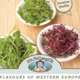Microgreens Flavours Of Western Europe