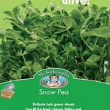 Sprouts-Alive-Snow-Pea