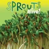 Sprouts Alive Alfalfa