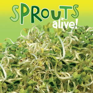 Sprouts Alive Sandwich