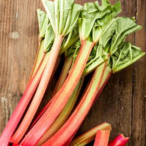 Rhubarb Giant Victoria