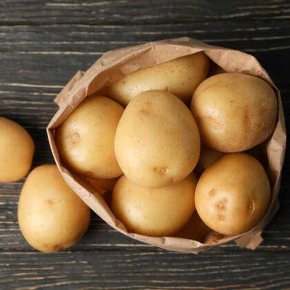Potato Snow Gem Pkcspsno - Garden Express Australia