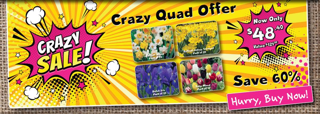 GE CrazyQuadOffer Slider 1
