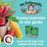 Mr Fothergill's Seeds