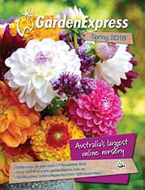 Current Catalogue