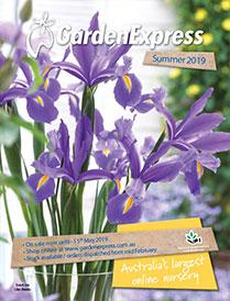 Garden Express Mid Summer 2019 Catalogue