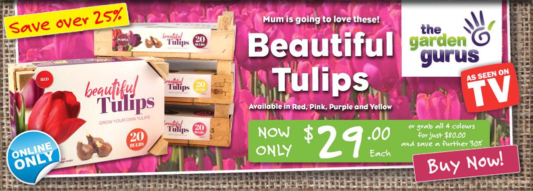 Ge Tulipcrates Slider