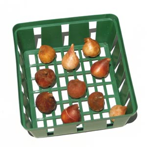 Gardeners Advantage Planting & Storage Basket Square 24cm – Set Of 3