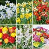 Gardeners Collection – Pre-order