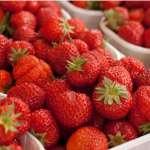 Strawberry Red Gauntlet