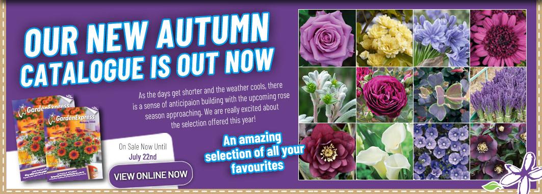 Ge Catalogue Autumn - Garden Express Australia
