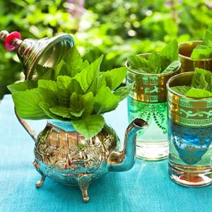 Herb Mint Moroccan Tea