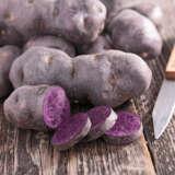 Certified Seed Potato Purple Congo