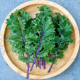 Herb Kale Red Russian