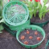 Gardeners Advantage Bulb Planting Basket Round 22cm