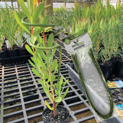 Gardeners Advantage Plant Supports Flexible