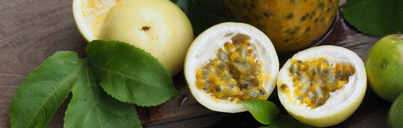 Header Passionfruit - Garden Express Australia