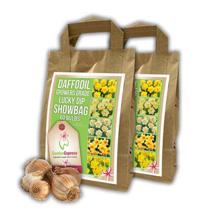 Daffodil Growers Grade Showbag