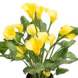 Calla Lily Natural Bouquet