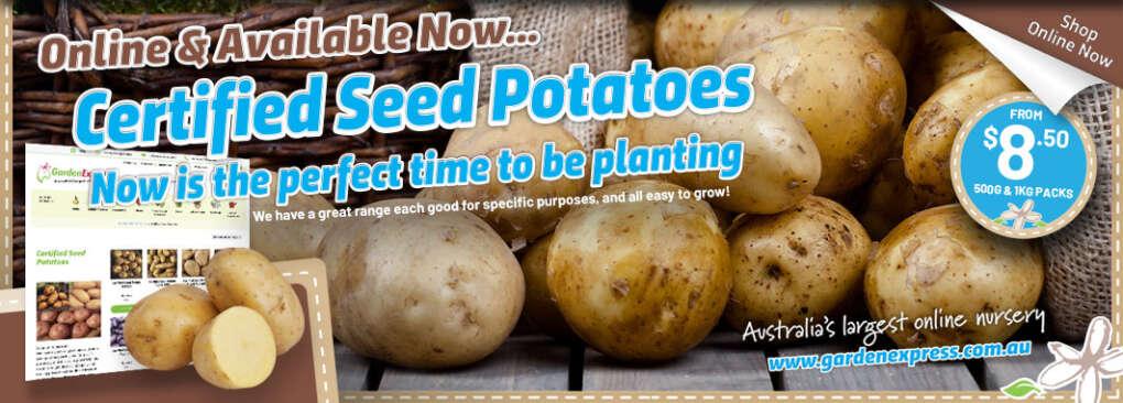Potatoes Slider